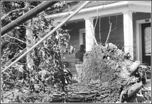 Image of person entering their home after a disaster with debris covering their property