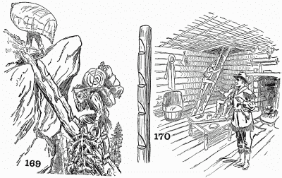 The pioneer log ladder.