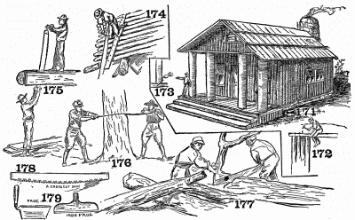 The use of the saw in log work.